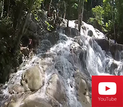 Dunns River Falls Only