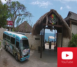 Negril Beach and Worlds Famous Sunset Tour